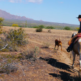 Exploring the diverse desert on horseback with Fort McDowell Adventures in Arizona